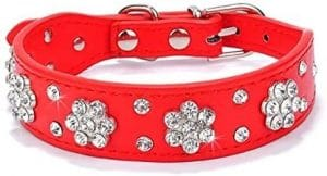 Didog Cute Pu Leather Dog Collar Rhinestone Flower Pattern Studded 1 Inch Width Fit Small And