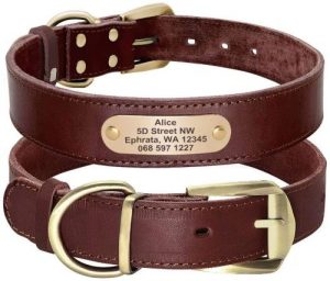 Didog Genuine Leather Dog Collars With Engraved Nameplate, Personalized Soft Leather Dog Collar Wit