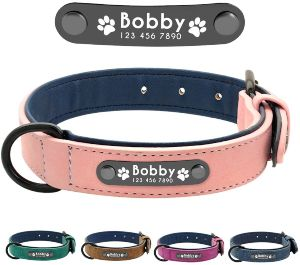 Didog Leather Custom Dog Collar,engraved Dog Collars With Personalized Nameplate,padded Custom Coll