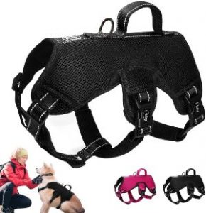 Didog Multi Use Escape Proof Dog Harnesses For Escape Artist Dogs,reflective Adjustable Padded Sport