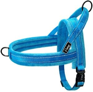 Didog Soft Flannel Padded Dog Vest Harness, Escape Proof Quick Fit Reflective Dog Strap Harness,easy