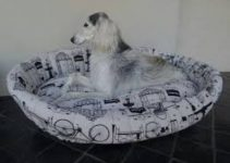 5 Best Dog Beds for Salukis (Reviews Updated 2021)