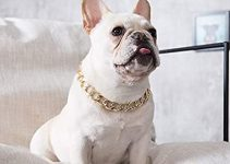 Dog Collar For French Bulldogs