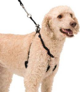 Dog Halter Non Pull No Choke Humane Pet Training Halter Harness, Easy Step In Vest Collar Halter F