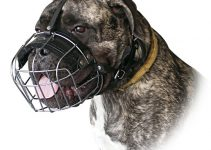 Dog Muzzle For Bullmastiffs