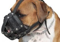 Dog Muzzles For Boxadors