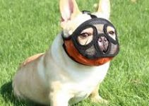 Dog Muzzels For French Bulldogs