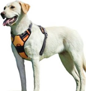 Eagloo Dog Harness No Pull, Walking Pet Harness With 2 Metal Rings And Handle Adjustable Reflective