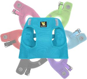 Ecobark Step In Dog Harness Reflective Soft Ultra Padded Mesh Dog Harnesses For Xxs, Xs, Small, And