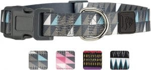 Friends Forever Dog Collar With Pattern Designed