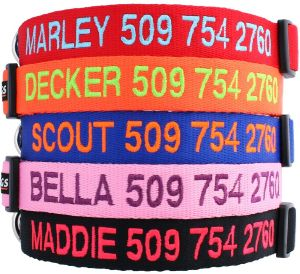 Gotags Personalized Dog Collar, Custom Embroidered With Pet Name And Phone Number In Blue, Black, Pi