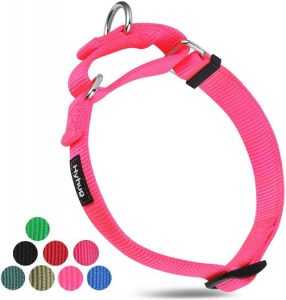 Hyhug Pets Premium Upgraded Heavy Duty Nylon Anti Escape Martingale Collar For Boy And Girl Dogs Co