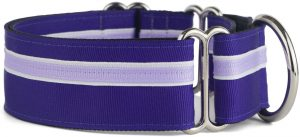 If It Barks 1.5 Martingale Collar For Dogs