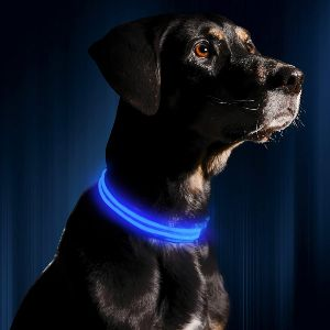 Illumiseen Led Dog Collar Usb Rechargeable Available In 6 Colors & 6 Sizes Makes Your Dog Visi