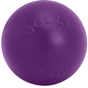 Jolly Pets Push N Play Ball Dog Toy