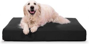K9 Ballistics Tough Orthopedic Dog Bed Rectangle, Nearly Indestructible & Chew Proof, Chew Resistant