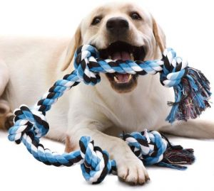 Kiliki Dog Rope Toys For Aggressive Chewers 3 Feet 5 Knots Indestructible Dog Chew Toys Tough Natur