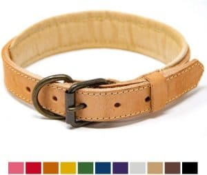 Logical Leather Padded Dog Collar Best Full Grain Heavy Duty Genuine Leather Collars