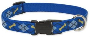 Lupine 3 4 Inch Dapper Dog Adjustable Dog Collar For Small To Large Dogs (1)