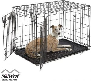 Midwest Homes For Pets Dog Crate Icrate Single Door & Double Door Folding Metal Dog Crates Fully