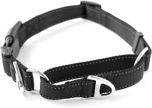 Mighty Paw Martingale Nylon Training Collar. Our Trainer Approved Limited Slip Collar. Modified Cinc