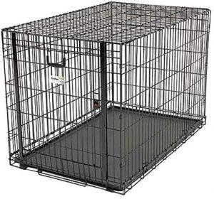 Ovation Single Door Crate With Up & Away Door 49 X 30.5 X 32.25