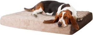 Petmaker Memory Foam Dog Bed With Removable Cover