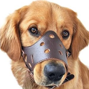 Pawliss Adjustable Anti Biting Dog Muzzle Leather