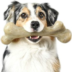 Pet Qwerks Dinosaur Barkbone Chew Toy Tough Durable Nearly Indestructible Bone For Extreme Aggress