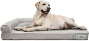 Petfusion Betterlounge Dog Bed W Solid Orthopedic Memory Foam, Waterproof Foam Liner, & Ykk Zippers