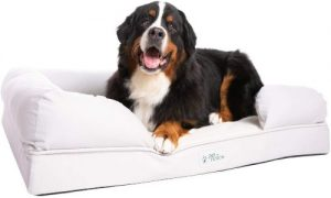 Petfusion Ultimate Dog Bed, Certipur Us Orthopedic Memory Foam, Size Color Options, Medium Firmness