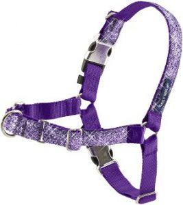Petsafe Bling Easy Walk Harness