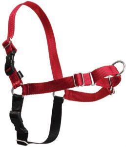 Petsafe Easy Walk Dog Harness, Red Black, Medium