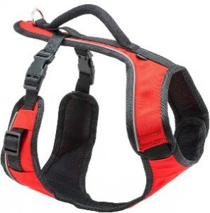 Petsafe Easysport Dog Harness, Adjustable Padded Dog Harness With Control Handle And Reflective Pipi