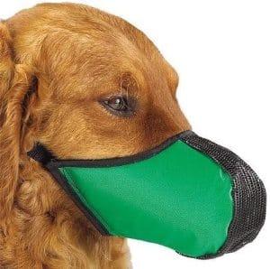 Proguard Softie Dog Muzzle, Medium P