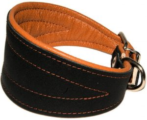 Real Leather Extra Wide Padded Tapered Dog Collar