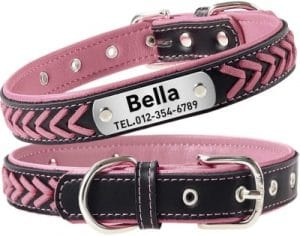 Taglory Personalized Dog Collar Leather,stainless Steel Nameplate Engraved,custom Western Collar