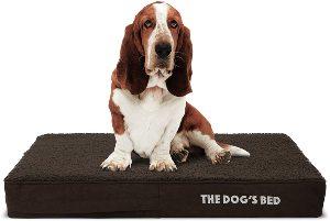 The Dog's Bed Orthopedic Dog Bed, Premium Memory Foam S Xxxl, Waterproof, Dog Pain Relief For Arthri
