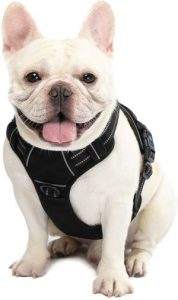 Walktofine Dog Harness No Pull Reflective, Comfortable Harness With Handle,fully Adjustable Pet Leas