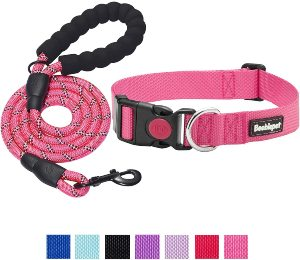 Beebiepet 2 Packs Classic Dog Collar With Quick Release Buckle Adjustable Dog Collars For Small Medi