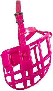Https Www.amazon.com Birdwell Enterprises Plastic Adjustable Headstall Dp B076vnkk3m Tag=dogproduc