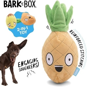 Barkbox Dog Squeak Toys Long Lasting For Chewers Durable Tug And Fetch Toys Interactive Stuffe