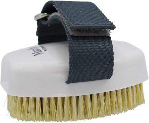 Martha Stewart Massage Bristle Brush