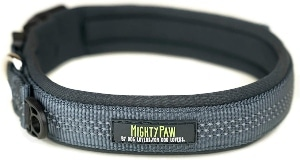 Mighty Paw Neopre