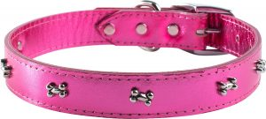 Omnipet Signature Leather Bone Dog Collar
