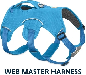 Ruffwear Web Master, Multi Use Support Dog Harness, Hiking And Trail Running, Service And Working, (1)