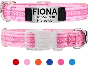Taglory Personalized Dog Collar,custom Dog Collar With Nameplate,dog Id Collars For Small Medium & L
