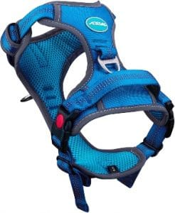 Https Www.amazon.com Thinkpet Harness Breathable Sport Handle Dp B07rxhdrd1 Tag=dogproductpic 20