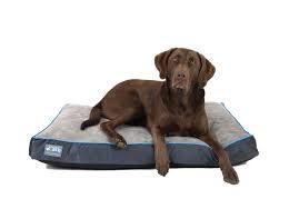 Better World Pets Orthopedic Dog Bed