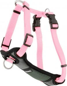 Frisco Padded No Pull Front Lead Dog Harness